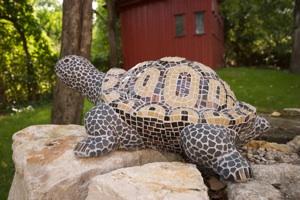 Schildkröte Mathilde